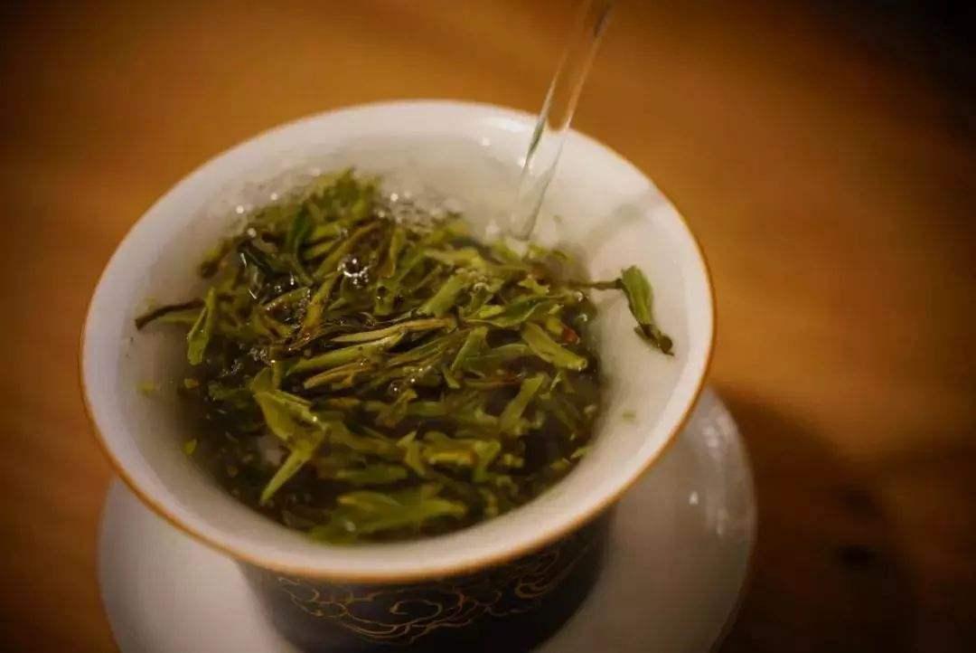 怎么泡白茶