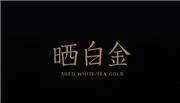 晒白金品牌引见